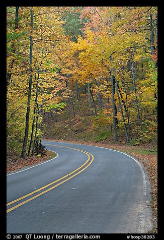 Road curve and fall colors on West Mountain. Hot Springs National Park (color)