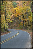 Road curve and fall colors on West Mountain. Hot Springs National Park, Arkansas, USA. (color)