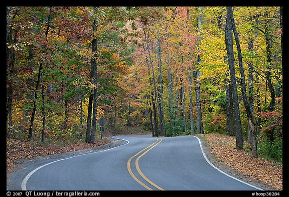 Windy road and fall colors on West Mountain. Hot Springs National Park (color)