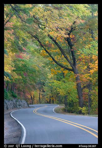 Rood, curve, fall colors, West Mountain. Hot Springs National Park (color)