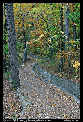 Built trail and fall colors, Hot Spring Mountain. Hot Springs National Park (color)