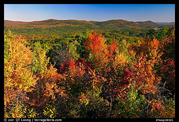 Vista with trees in fall colors, North Mountain, early morning. Hot Springs National Park (color)