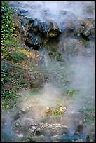 Steam rising from hot water cascade. Hot Springs National Park, Arkansas, USA. (color)