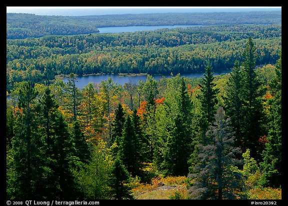 Lakes and forest from Mt Ojibway. Isle Royale National Park (color)