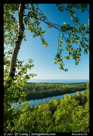View from Louise Lookout in the summer. Isle Royale National Park (color)