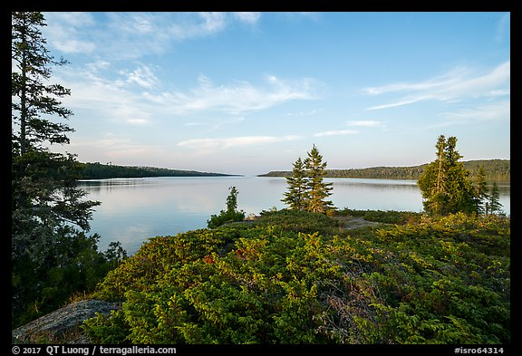 Moskey Basin, late afternoon. Isle Royale National Park (color)