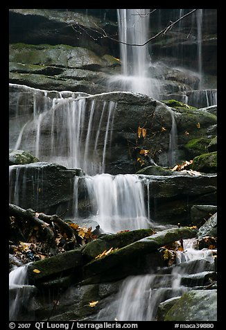 Stream cascading over limestone rocks. Mammoth Cave National Park (color)