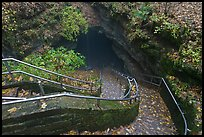 Steps and handrails leading down to cave. Mammoth Cave National Park ( color)