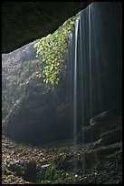 Ephemeral waterfall seen from inside cave. Mammoth Cave National Park ( color)