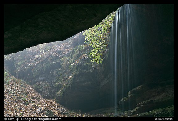 Rain-fed waterfall seen from inside cave. Mammoth Cave National Park (color)