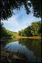 Green River and reflections at Houchin Ferry. Mammoth Cave National Park ( color)