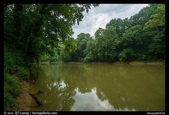 Green River at Dennison Ferry. Mammoth Cave National Park (color)