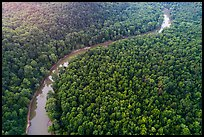 Aerial view of Green River curve. Mammoth Cave National Park ( color)