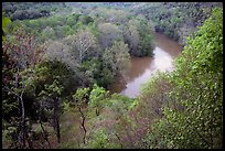Green River seen from bluff in springtime. Mammoth Cave National Park ( color)