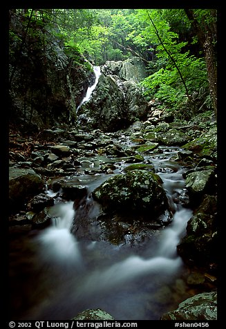 Falls of the Rose river. Shenandoah National Park (color)