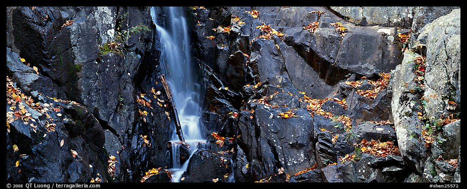 Cascade over dark rocks sprinkled with fallen autumn leaves. Shenandoah National Park (color)