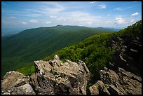 View from Hawksbill Mountain. Shenandoah National Park ( color)