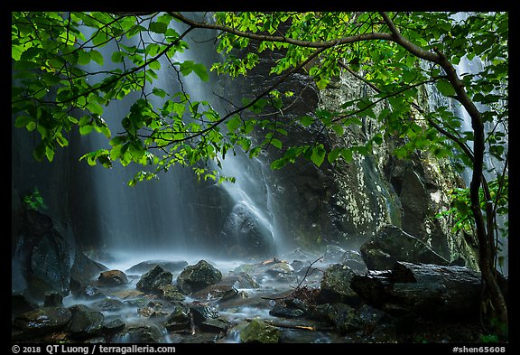 Ephemeral waterfall in Whiteoak Canyon. Shenandoah National Park (color)