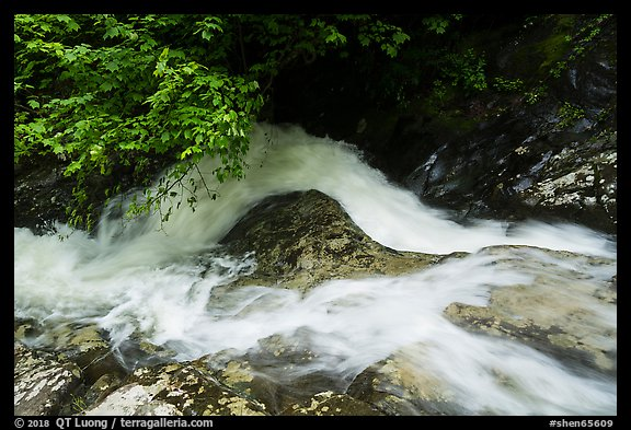 Robinson River whitewater in Whiteoak Canyon. Shenandoah National Park (color)