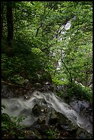 Converging Waterfalls in Whiteoak Canyon. Shenandoah National Park ( color)