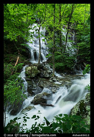 Waterfalls and stream, Whiteoak Canyon. Shenandoah National Park (color)
