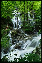 Waterfalls and stream, Whiteoak Canyon. Shenandoah National Park ( color)