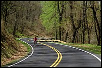 Bicyclist on Skyline drive. Shenandoah National Park, Virginia, USA.