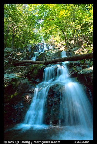 Dark Hollow Falls. Shenandoah National Park (color)