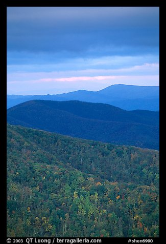 Hillside and receding ridges in autumn. Shenandoah National Park (color)