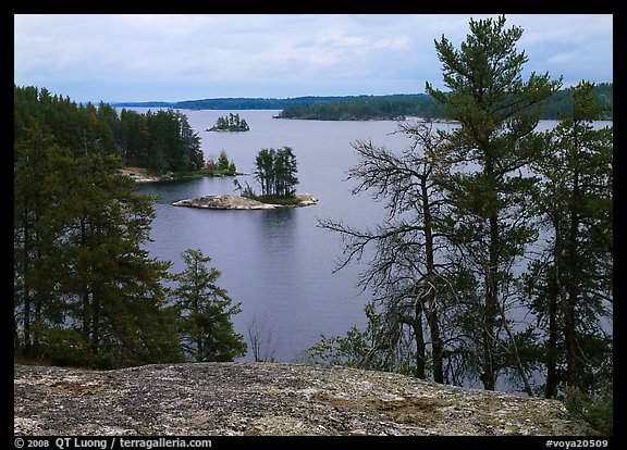 Islet and trees, Anderson Bay. Voyageurs National Park (color)