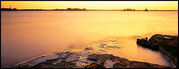 Lakeshore and glassy water painted yellow by sunrise. Voyageurs National Park (Panoramic color)