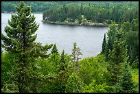 Peary Lake from overlook. Voyageurs National Park ( color)
