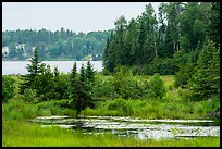 Pond and Peary Lake. Voyageurs National Park ( color)