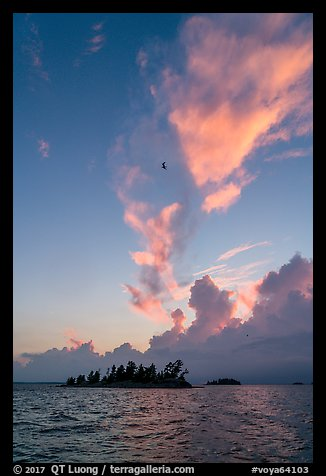 Bird, islets and clouds at sunset, Rainy Lake. Voyageurs National Park (color)
