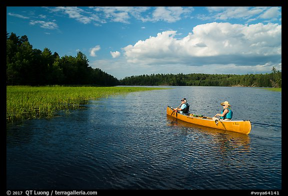 Canoe and aquatic grasses, Sand Point Lake. Voyageurs National Park (color)