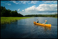Canoe and aquatic grasses, Sand Point Lake. Voyageurs National Park ( color)
