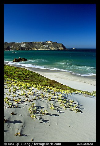 Sand dunes and Cuyler Harbor, afternoon, San Miguel Island. Channel Islands National Park (color)