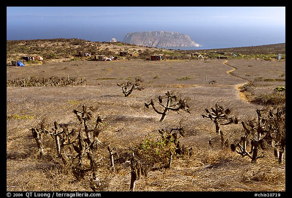 Campground, San Miguel Island. Channel Islands National Park (color)