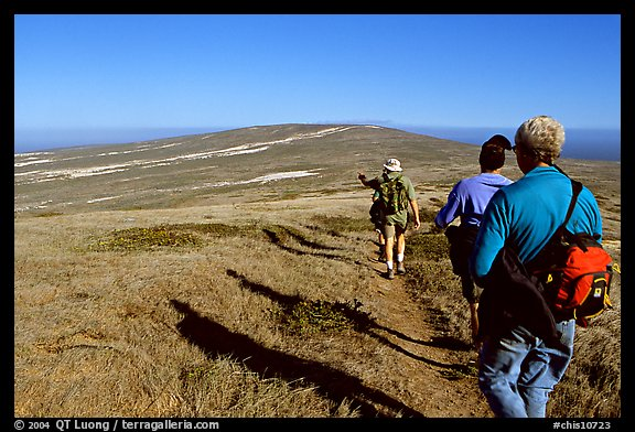 Hikers on  trail to Point Bennett, San Miguel Island. Channel Islands National Park (color)