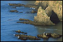 Rocky shoreline of Middle Anacapa Island. Channel Islands National Park, California, USA. (color)