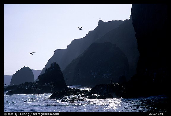 Steep cliffs, East Anacapa. Channel Islands National Park (color)