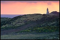 Lighthouse, East Anacapa Island. Channel Islands National Park, California, USA.