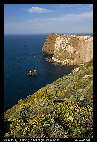 North Bluff, Santa Cruz Island. Channel Islands National Park (color)