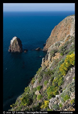 Rock and cliff in springtime, Santa Cruz Island. Channel Islands National Park (color)