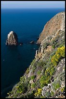 Rock and cliff in springtime, Santa Cruz Island. Channel Islands National Park, California, USA. (color)