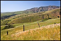 Grasslands, fence and hill ridges, Santa Cruz Island. Channel Islands National Park, California, USA. (color)