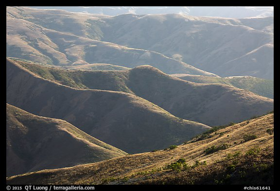 Hills and ridges in late afternoon, Santa Rosa Island. Channel Islands National Park (color)