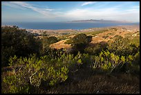 Summit of Black Mountain, Santa Rosa Island. Channel Islands National Park ( color)