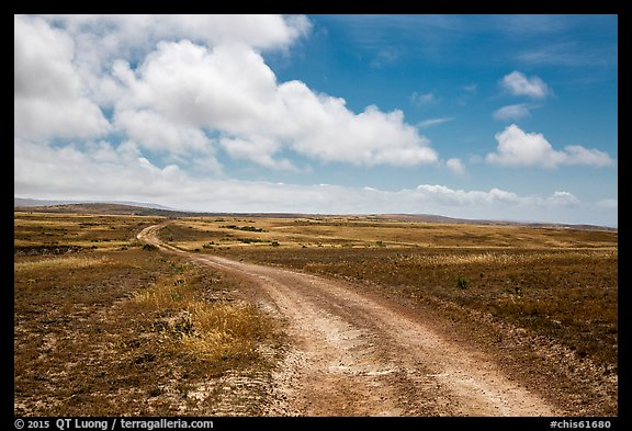 Road, Santa Rosa Island. Channel Islands National Park (color)