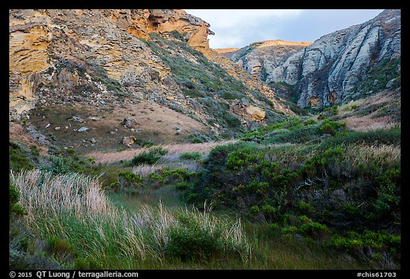 Lobo Canyon at sunset , Santa Rosa Island. Channel Islands National Park (color)